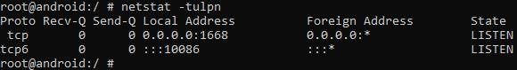 netstat output